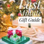 last minute holiday Christmas gift guide Montreal lifestyle beauty fashion blog