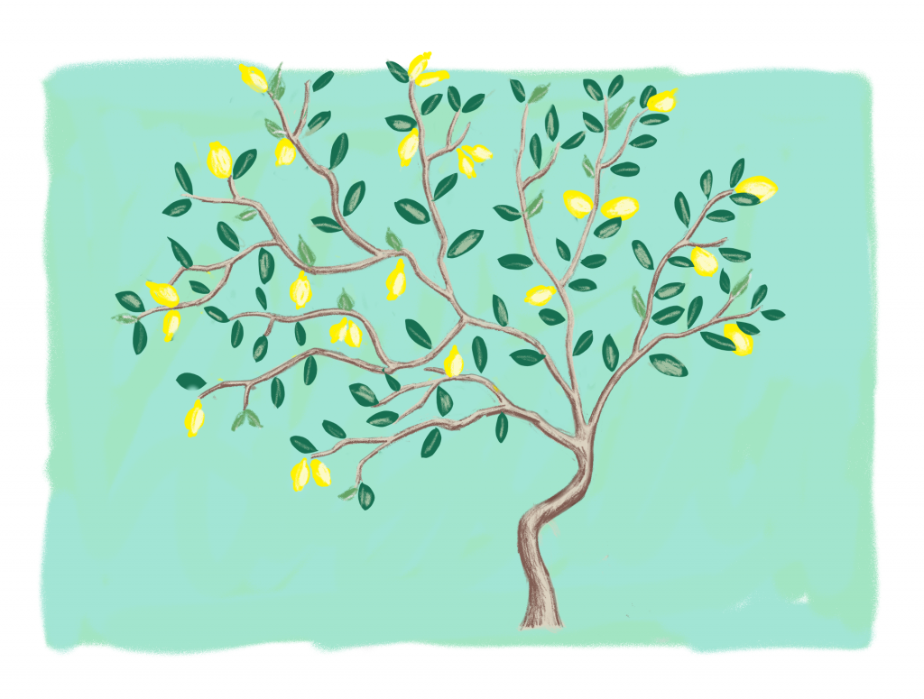 digital sketch DIY lemon tree statement mural accent wall Montreal lifestyle fashion beauty blog