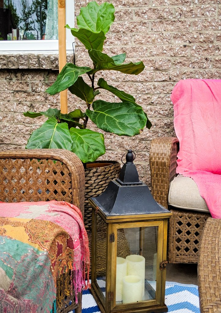 vintage lantern fiddle leaf fig patio deck design decor makeover remodel Montreal lifestyle beauty fashion blog