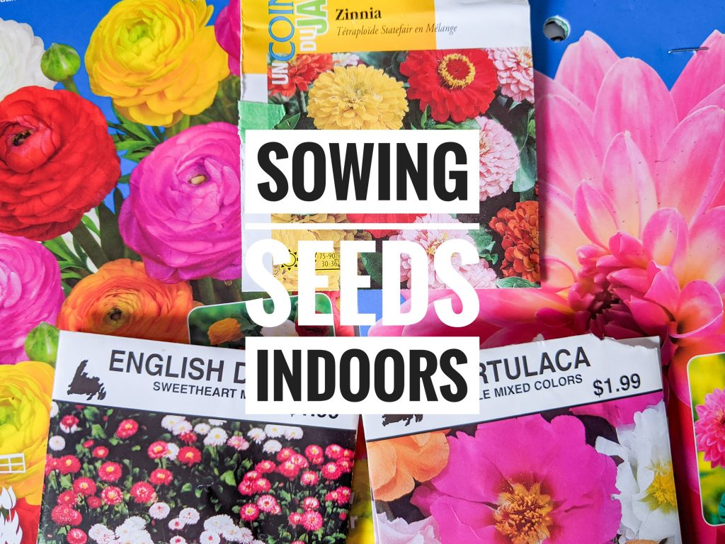 DIY sowing seeds indoors Montreal fashion lifestyle blog