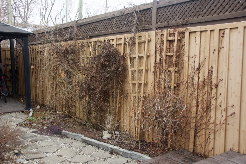 before backyard border garden transformation remodel Montreal lifestyle fashion beauty blog 2