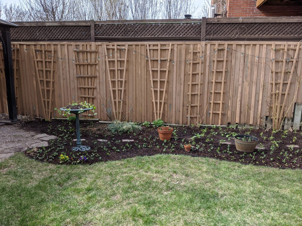 transplanting seedlings backyard border garden transformation remodel Montreal lifestyle fashion beauty blog 1
