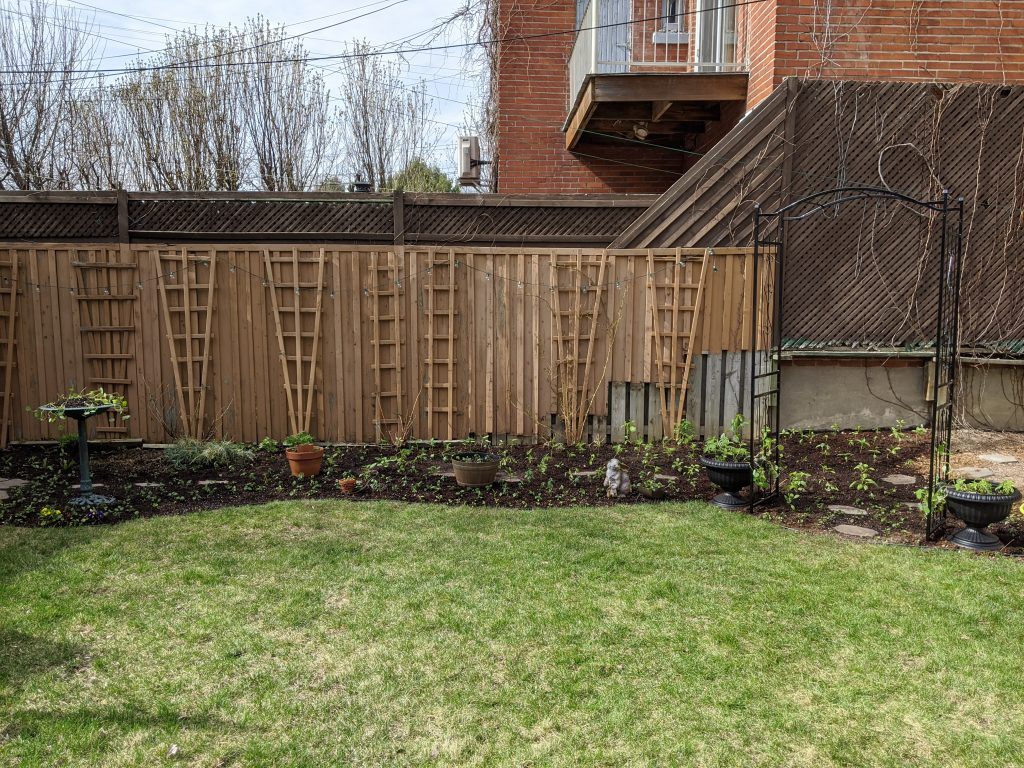 transplanting seedlings backyard border garden transformation remodel Montreal lifestyle fashion beauty blog 3
