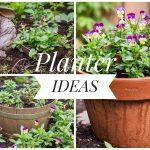 5 Easy Planter Ideas Montreal lifestyle fashion beauty blog