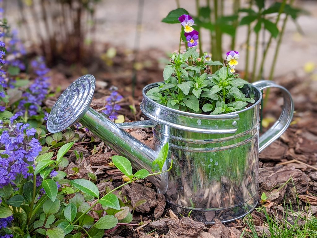 watering can planter ideas Montreal lifestyle fashion beauty blog 2