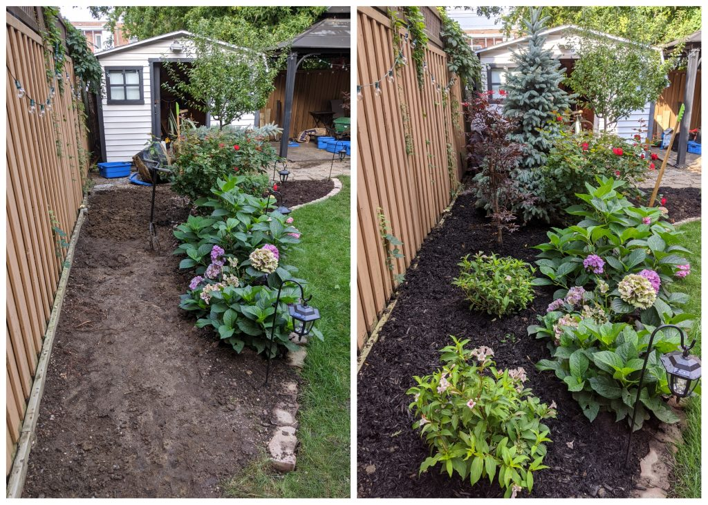 before and after planting trees and bushes backyard landscape garden makeover Montreal lifestyle fashion beauty blog