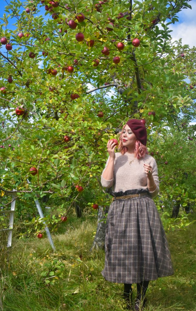 checkered skirt beret vintage retro fall fashion Quinn farm apple picking Montreal lifestyle fashion beauty blog