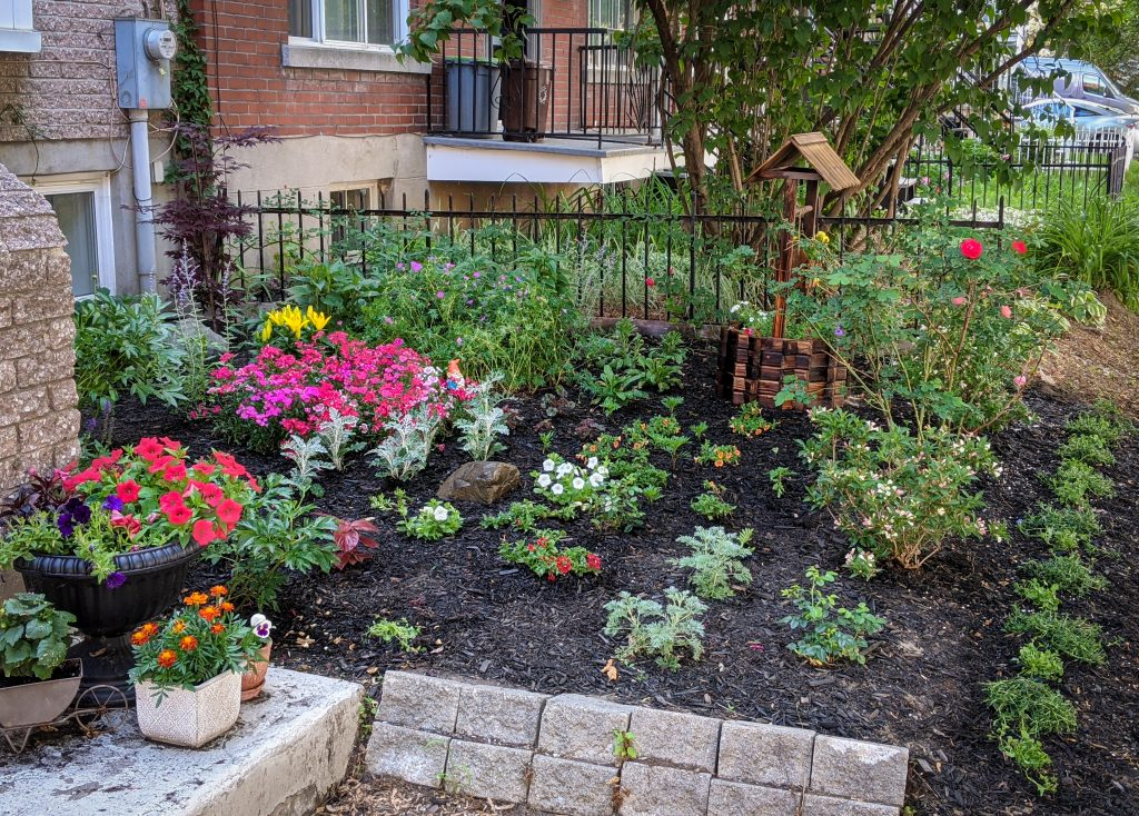 DIY front yard landscaping Montreal lifestyle fashion beauty blog 1