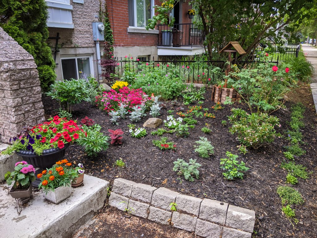 DIY front yard landscaping Montreal lifestyle fashion beauty blog 2