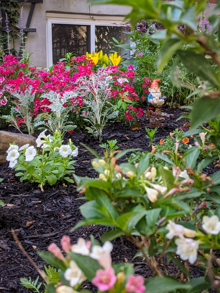 DIY front yard landscaping Montreal lifestyle fashion beauty blog 4