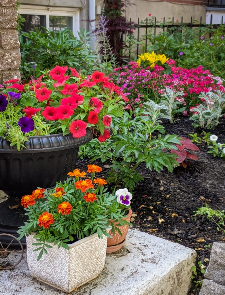 DIY front yard landscaping Montreal lifestyle fashion beauty blog 6